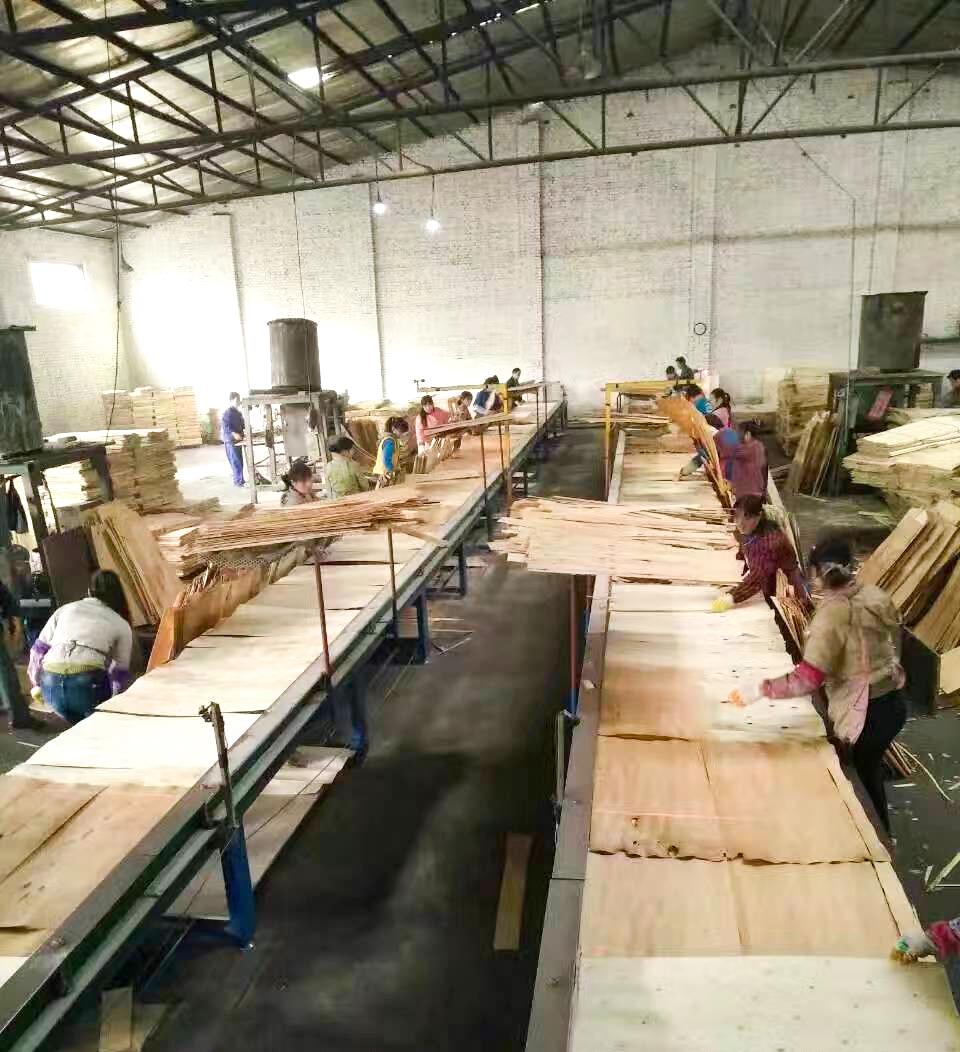贵港建筑模板-东龙厂家的生产